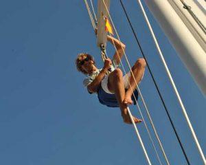 Yachtüberführung | Amel | Skipper gesucht | Überführung